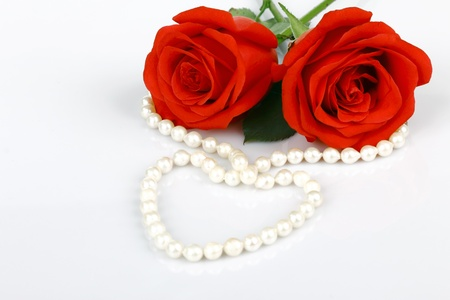 elegant rose with necklace photo