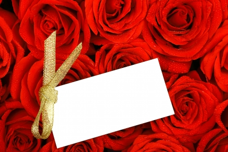 Red roses with a blank gift tag  photo