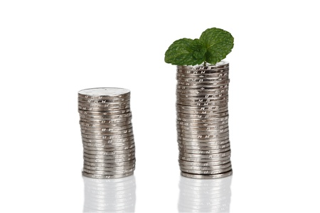 Money and plant isolated on white background Money Concept Stock Photo - 17938156