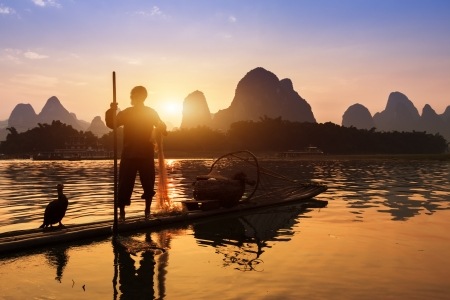 Boat with cormorants birds, traditional fishing in China use trained cormorants to fish, Yangshuo, China photo