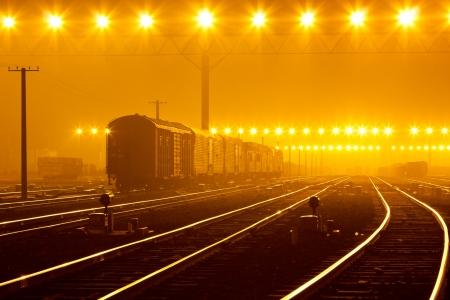 Cargo train platform at sunset with container Stockfoto