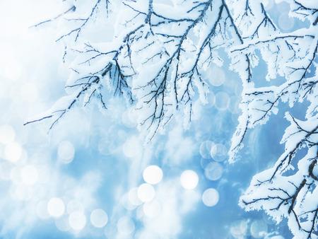 Fondo de invierno Foto de archivo - 34061567