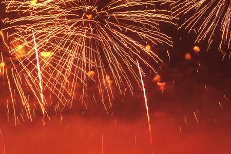 Brillantemente coloridos fuegos artificiales en el cielo nocturno