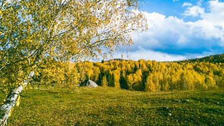 Beautiful rural landscape Standard-Bild - 120403668