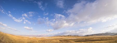 Autumn grassland Standard-Bild