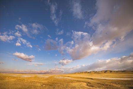 Autumn grassland Standard-Bild - 119129385