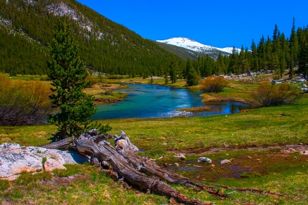 pacific crest trail: Lyell fork of Tuolumne river along Pacific Crest Trail, Yosemite National Park. Stock Photo