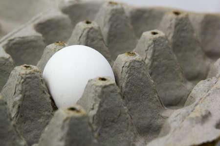 dof: Shallow DOF set on the egg. Stock Photo