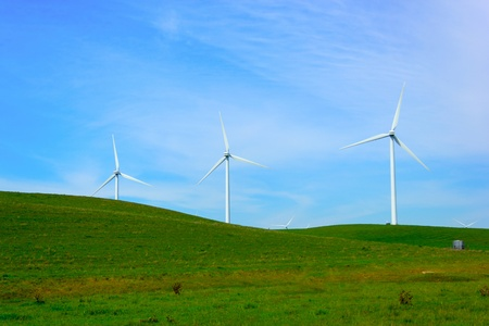 Shiloh Wind Power Plant is a wind farm located in the Montezuma Hills of Solano County, California, USA, very near to Bird photo