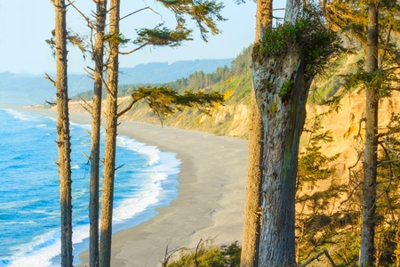 the ocean state: View from Patricks point state park, California