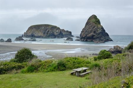 samuel: Rock stacks at pacific ocean shore in Samuel Boardman state park, Whaleshead, Oregon, USA