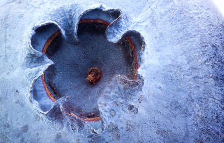 extreme macro: Extreme closeup of blueberry good for background. Stock Photo