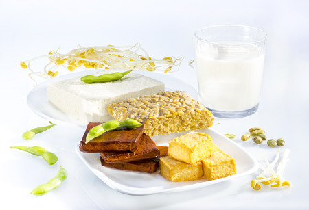 Variety of soy products including tofu, tempeh, milk and sprouts. Stock Photo