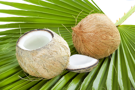 Whole and open coconuts on palm leaf isolated on white background.