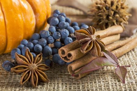 Orange pumpkin, star anise, cinnamon sticks and on  brown burlap .