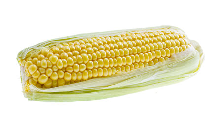 Trimmed sweet corn isolated on white background .