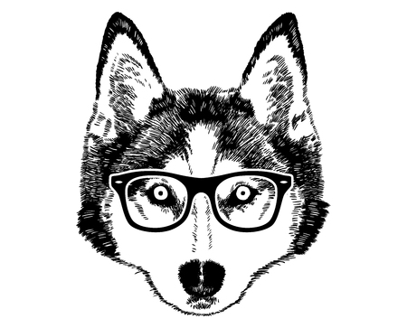 Husky Face With Glasses / Black And White / Vector / Isolated