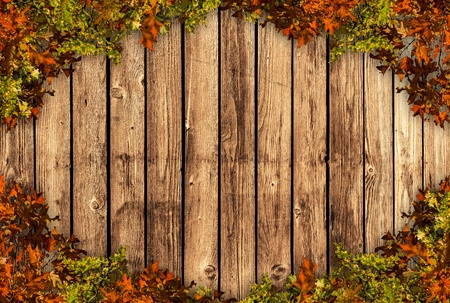 Wooden board with autum coloured leaves