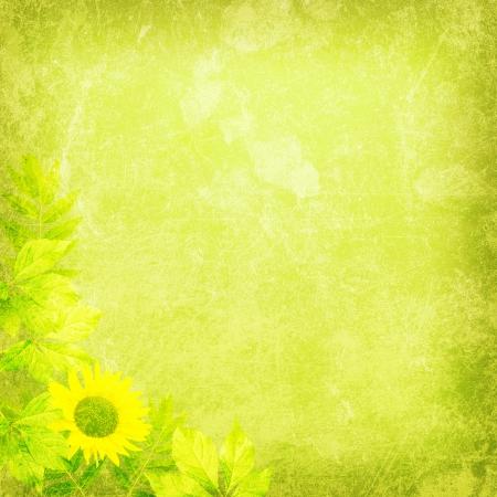 fresh background texture