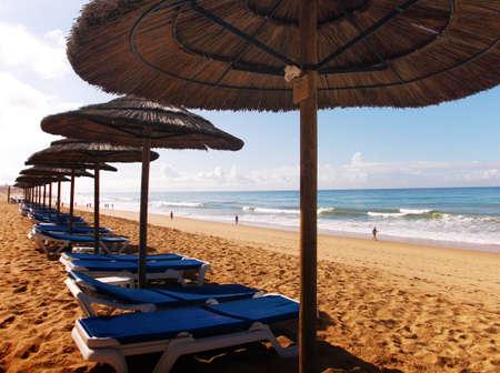 golden years series: Several Beach Hammocks in a Row