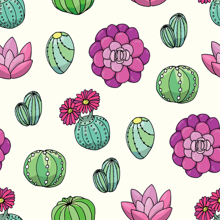 succulent: Succulent seamless pattern vector background Illustration