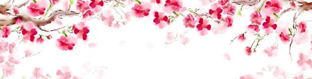 Blooming sakura japan cherry branch with pink flowers. Panorama sakura card design. Isolated on white background. Archivio Fotografico