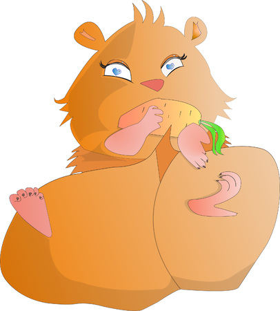 Hamster lying eating carrot on white isolated background
