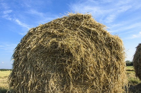 a haystack on the field against a blue sky background
