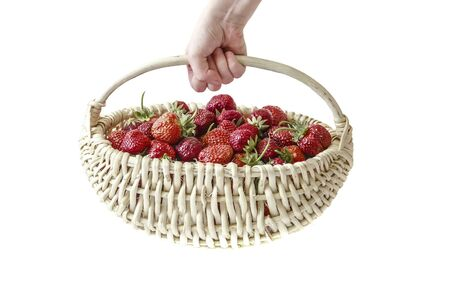 The childs hand holds a wicker basket with fresh red strawberries and leaves isolated on a white background. Imagens