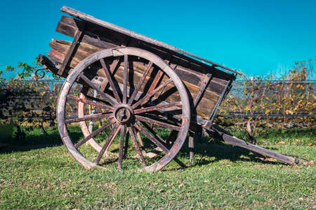 old horse cart with vineyard background