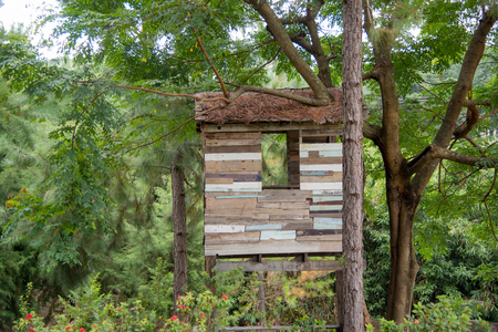 Treehouse in the forrest on cloudy sky Stock Photo
