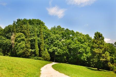 Estate vista del parco tropicale a Sochi Arboretum, Russia