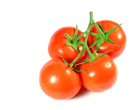 Tomatoes on branch isolated on white Stock Photo - 17398389