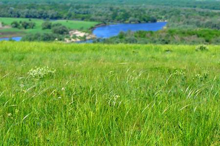 Steppe nella riserva naturale Divnogorie in giornata di sole, regione di Voronezh, Russia