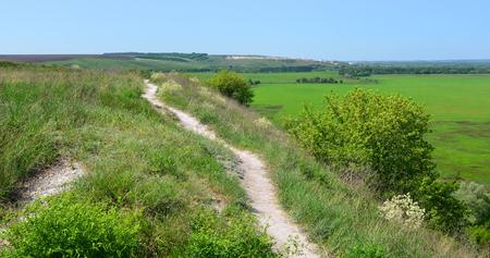 voronezh: The trails in the nature reserve  Divnogorie  in sunny day, Voronezh region, Russia