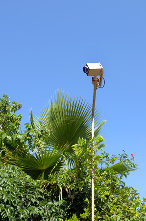 Outdoor telecamera di sorveglianza nei confronti di un parco tropicale