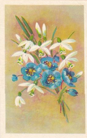 USSR - CIRCA 1975: Soviet greeting postcard Happy March 8! drwan by artist N.Kirpicheva