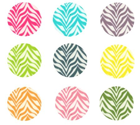 Colorful Zebra Circles