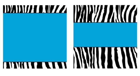 Blue Zebra Paper Set photo