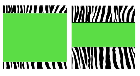 Green Zebra Paper Set