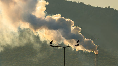 Pollution spews out into the sky in Spain