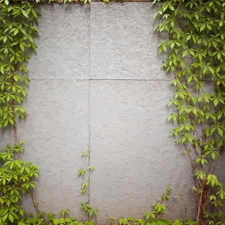 Urban grungy street wall, may be used as background or texture Stock Photo - 14310503