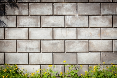 Urban grungy street wall, may be used as background or texture Stock Photo - 14635353