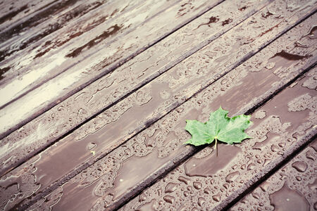 Wet wooden floor during rain with a fallen leaf, abstract background photo