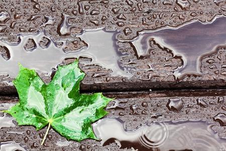 Wet wooden floor during rain with a fallen leaf, abstract background Standard-Bild