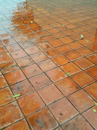 Clay Tile Flooring texture walkway in hotel
