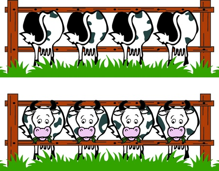 Cow barn Vector