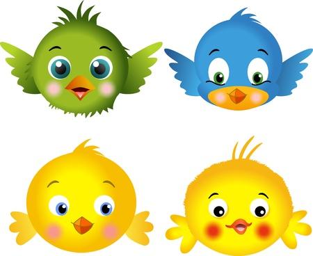 bird clipart: Uccelli e pulcini