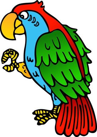 cartoon parrot: Parrot yellow beak Illustration