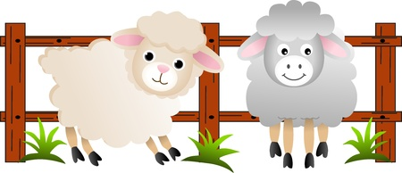The sheep on the farm Vector
